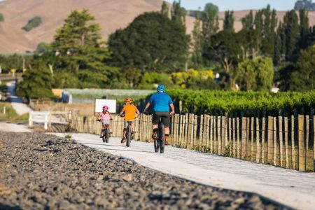 Safe-Cycle-Trails-around-the-Vinyards-of-Havelock-North-1600x1067